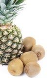 Ananas e kiwis Fotografia Stock