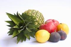 Ananas e l'altra frutta Fotografia Stock