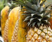 Ananas e papaia fotografia stock