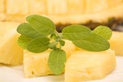 Ananas e slavia Fotografia Stock Libera da Diritti