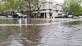 Ananas Ekspresowa ulewa Uderza San Fransisco zatoki teren fotografia royalty free