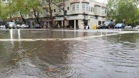 Ananas Ekspresowa ulewa Uderza San Fransisco zatoki teren zdjęcie stock