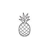 Ananas en ananaslijnpictogram, gezond fruit vector illustratie