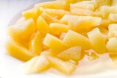 Ananas en boîte images libres de droits