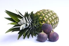 Ananas en fig. Royalty-vrije Stock Afbeelding