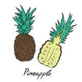Ananas en gesneden stuk Royalty-vrije Stock Afbeeldingen