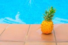 Ananas en pool Stock Foto's