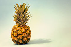 Ananas entier Images libres de droits