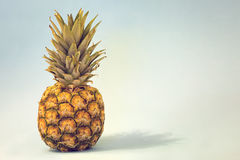 Ananas entier Photographie stock