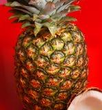 Ananas et noix de coco - plan rapproché Photographie stock