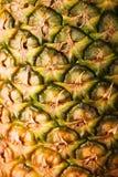 ananas för close 3 upp Arkivbilder