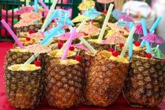 Ananas für Pina Coladas Stockbild