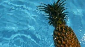 Ananas flottant dans l'eau bleue dans la piscine Aliment biologique cru sain Fruit juteux Fond tropical exotique banque de vidéos