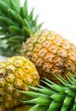 Ananas. Fondo della frutta fotografia stock libera da diritti