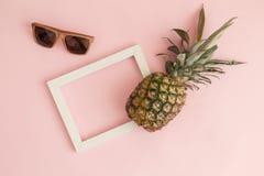 Ananas, Fotorahmen und tropischer abstrakter Begriff der hölzernen Sonnenbrille Lizenzfreie Stockfotos