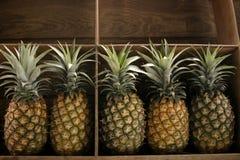 Ananas für Verkauf Lizenzfreie Stockfotos