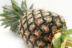 Ananas frais avec le fond blanc d'isolat Photos stock