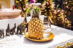 Ananas frais du plat photos libres de droits