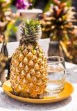 Ananas frais du plat photos stock