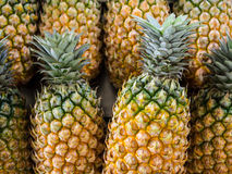 Ananas frais en gros plan de la Thaïlande Photographie stock libre de droits