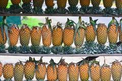 Ananas-Frucht-Anzeige für Verkauf auf kleiner Straße in Malwana Lizenzfreie Stockfotos