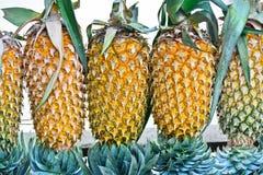 Ananas-Frucht-Anzeige für Verkauf auf kleiner Straße in Malwana Stockfotos
