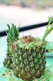 Ananas-gebratener Reis Lizenzfreies Stockbild