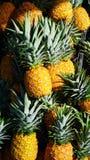 Ananas gestapelt Lizenzfreies Stockbild