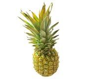 Ananas getrennt auf Weiß Stockbild