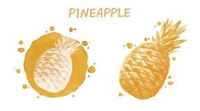 Ananas Illustrazione dell'acquerello Fotografie Stock Libere da Diritti