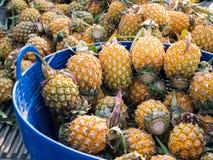 Ananas im blauen Plastikkorb Stockfotografie