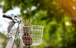 Ananas im Fahrradkorb auf Grün verwischte Hintergrund bokeh weich Lizenzfreie Stockfotos