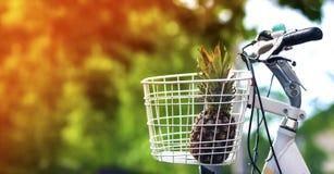 Ananas im Fahrradkorbgrün verwischte Hintergrund bokeh Lizenzfreie Stockfotografie