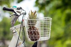 Ananas im Fahrradkorbgrün verwischte Hintergrund bokeh Lizenzfreies Stockbild