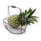 Ananas im Korb Stockfoto