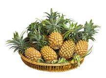 Ananas im Korb Lizenzfreies Stockfoto