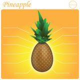 Ananas Infogram Lizenzfreie Stockbilder