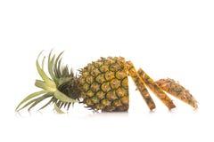Ananas ingen vit bakgrund Arkivbild