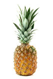 Ananas isolated Stock Photo