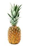 Ananas isolated Stock Photo