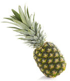 Ananas isolated. On white background Royalty Free Stock Photos