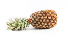 Ananas. Isolated on white background Royalty Free Stock Photography