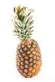 Ananas Royalty Free Stock Image