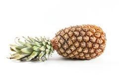 Ananas Stock Image