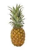 Ananas isolato Fotografia Stock Libera da Diritti