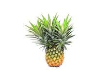 Ananas isolato su fondo bianco Fotografia Stock
