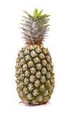 Ananas isolato su fondo bianco Immagine Stock