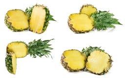 Ananas isolato su fondo bianco Insieme o raccolta Immagine Stock Libera da Diritti