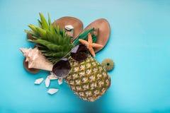 Ananas jest ubranym okulary przeciwsłonecznych, wakacje pojęcie zdjęcie royalty free