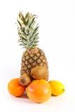 Ananas kiwi oranges Stock Image